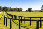 pic of farm landscape  - Double fence at horse farm - JPG