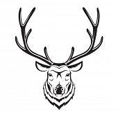 image of deer head  - monochrome image of an deer head - JPG
