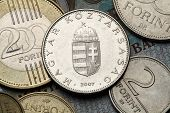 pic of hungarian  - Coins of Hungary - JPG