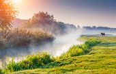 picture of fantastic  - Fantastic foggy river with fresh green grass in the sunny beams - JPG