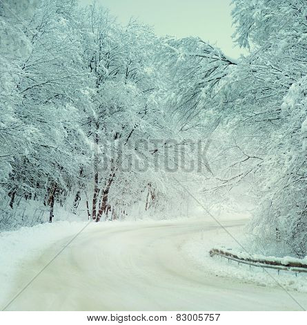 Road In The Winter Countryside