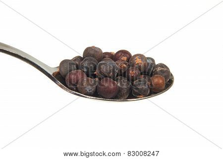 Dried Juniper Berries On A Teaspoon