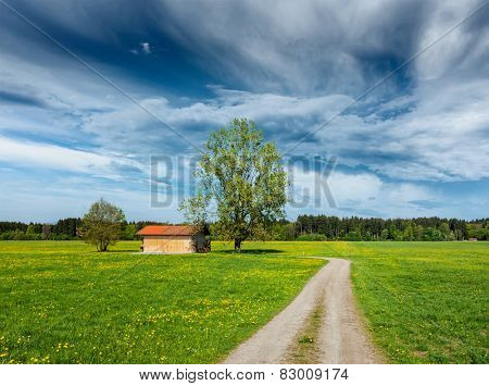 Rural road in summer meadow with wooden shed. Bavaria, Germany