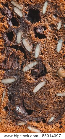 Texture Of Chocolate Cake With Nuts And Seeds