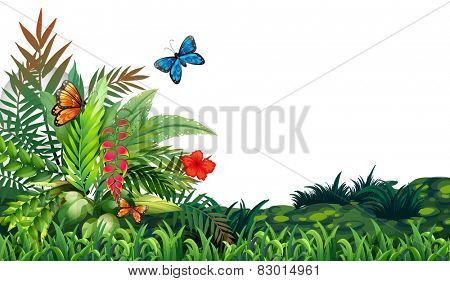 Illustration of butterflies flying in the garden