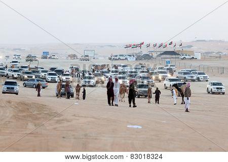 Camel Festival in Abu Dhabi