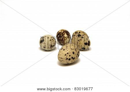 group of quail eggs, isolated on white background