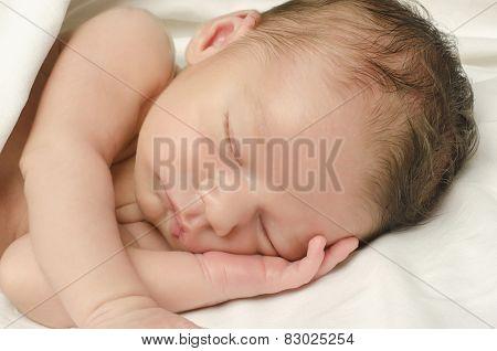 New Born Baby Boy Sleeping.