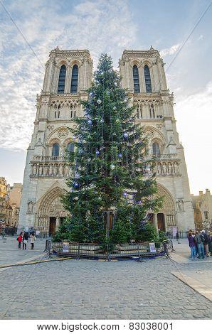 PARIS, FRANCE - 29 NOVEMBER, 2014: Cathedral Notre Dame de Paris (France)