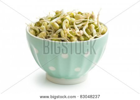 Sprouted mung beans in bowl on white background
