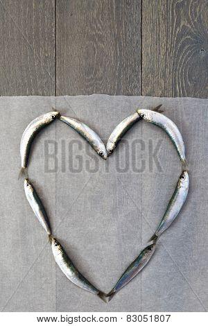Fresh sardine in heart form