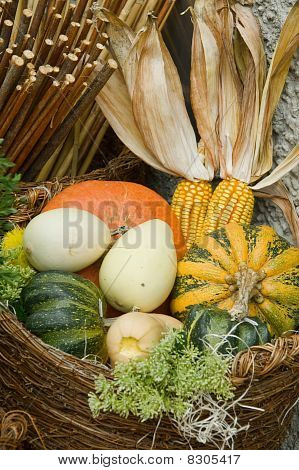 Pumpkins Basket