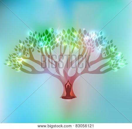 Big Tree And Woman