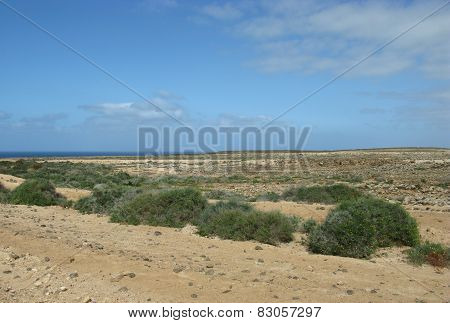 The west coast of Fuerteventura
