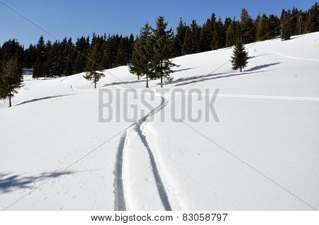 Beautiful Winter Landscape With Ski Tracks In The Snow