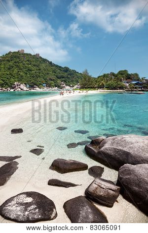 Beautiful Beach In Koh Tao, Thailand