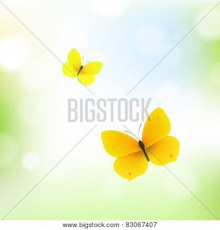 Butterfly And Bokeh With Gradient Mesh, Vector Illustration