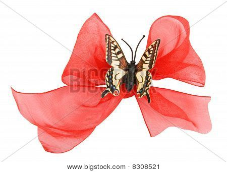 Ribbon  Butterfly