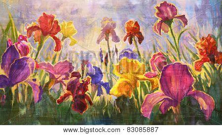 Illustration of Irises - imitation oil on canvas.