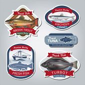 stock photo of brook trout  - Fish labels set 5 - JPG