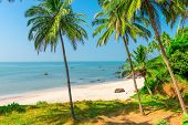 picture of deserted island  - white sand beach and palm trees on a deserted island - JPG