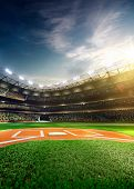 picture of arena  - Professional baseball grand arena in the sunlight - JPG