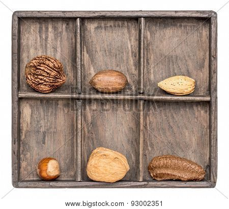 a variety of nuts (walnut, pecan, hazelnut, Brazilian and almond)  in a rustic wooden shadow box, isolated on white