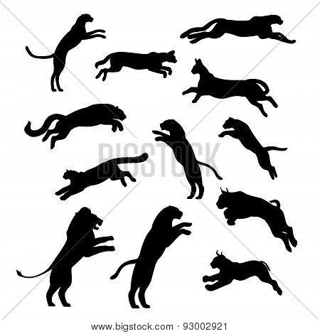 Jumping cats set vector