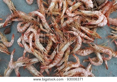 Dried shrimp, preserved seafood