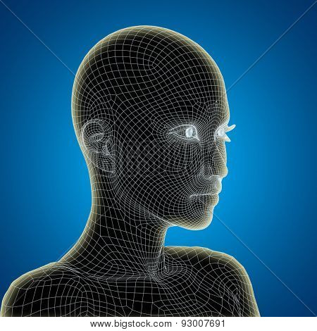 Concept or conceptual 3D wireframe young human female or woman face or head on blue gradient background