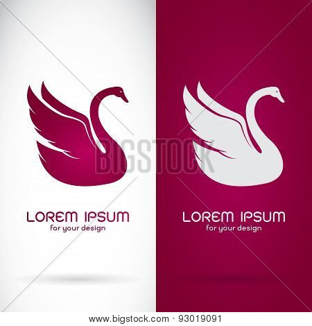 Vector Image Of An Swan Design On White Background And Purple Background, Logo, Symbol