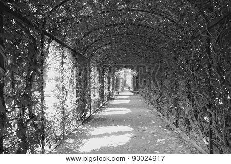 Schoenbrunn Gardens