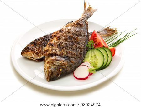 Dorada Fish.