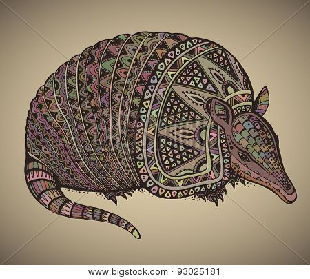 Armadillo hand drawn vector illustration with a lot of details and colors