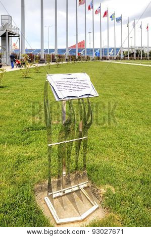 Sochi. Memorable Sign. Planting Magnolias Winners Of The Olympic Games