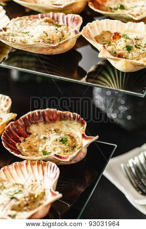 Scallops in the shell