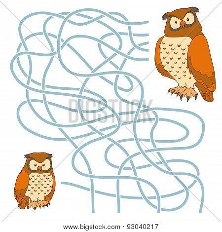 Maze Game (owl Family)