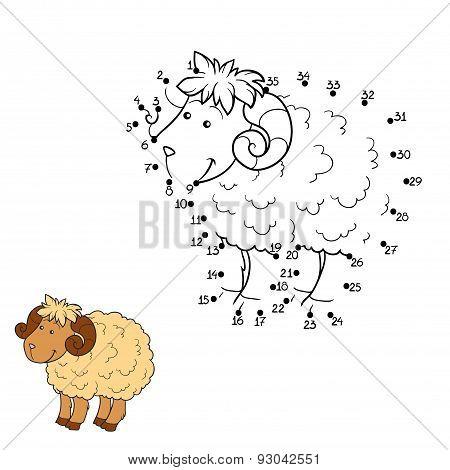 Numbers Game (sheep)