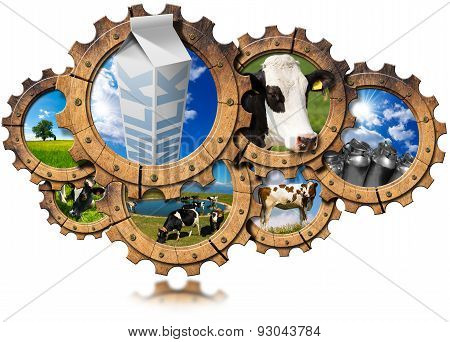Production Of Milk - Processing Concept