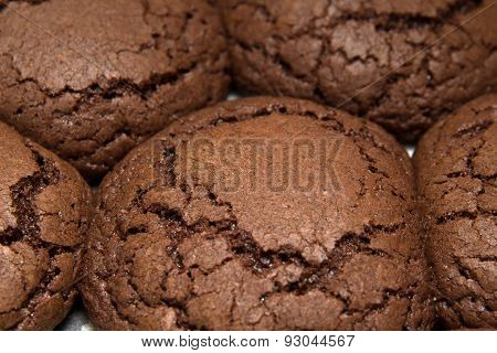 Freshly Made Choocolate Cookies
