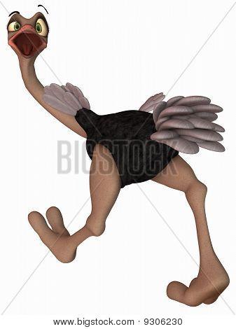 Toon Ostrich