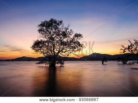 Seascape During Sunset. Klong Mudong, Phuket Thailand
