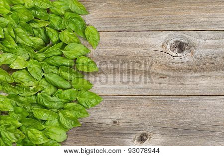 Collection Of Fresh Large Basil Leafs On Aged Wooded Table