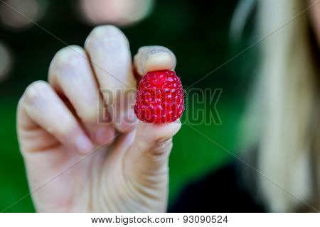 Raspberry holding in the hands