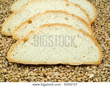 Bread slices On Grain
