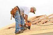 pic of rafters  - Framing contractor installing roof sheeting over rafters on a new commercial residential construction project - JPG