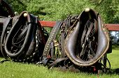 picture of harness  - Horse collars - JPG