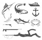 picture of spearfishing  - Vector set of icons and silhouettes of equipment and types of fish and underwater animals on white isolated background - JPG