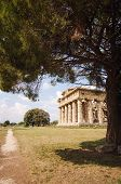 stock photo of ceres  - Temple Of Neptune In Paestum. Archeologycal site in  Italy ** Note: Visible grain at 100%, best at smaller sizes - JPG