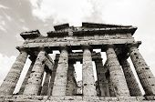foto of ceres  - Temple of Neptune in black and white the famous Paestum archaeological site - JPG